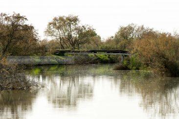 Ένα μικρό γεφυράκι στο δέλτα του Γαλλικού ποταμού. © Aris Papadopoulos