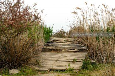 Eine andere kleine Brücke im Delta des Gallikos. © Aris Papadopoulos